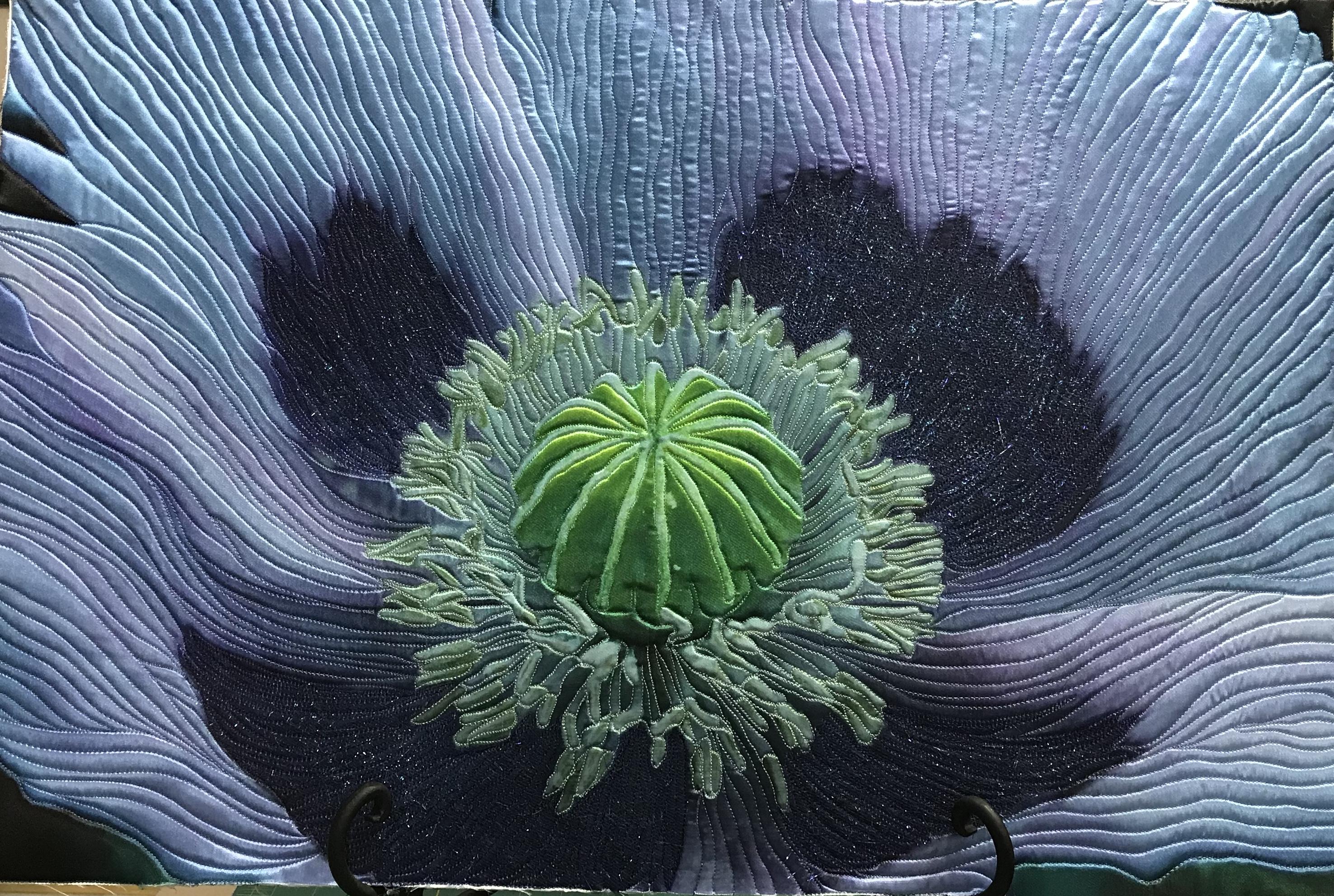 Blue Poppy by Teresa Schlabach