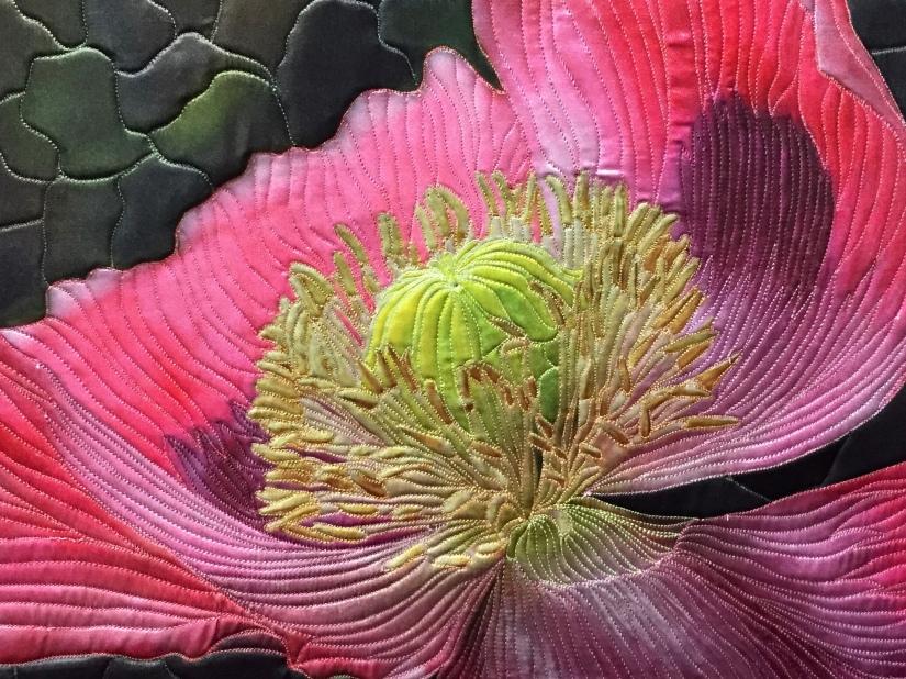 Pink Poppy by Teresa Schlabach