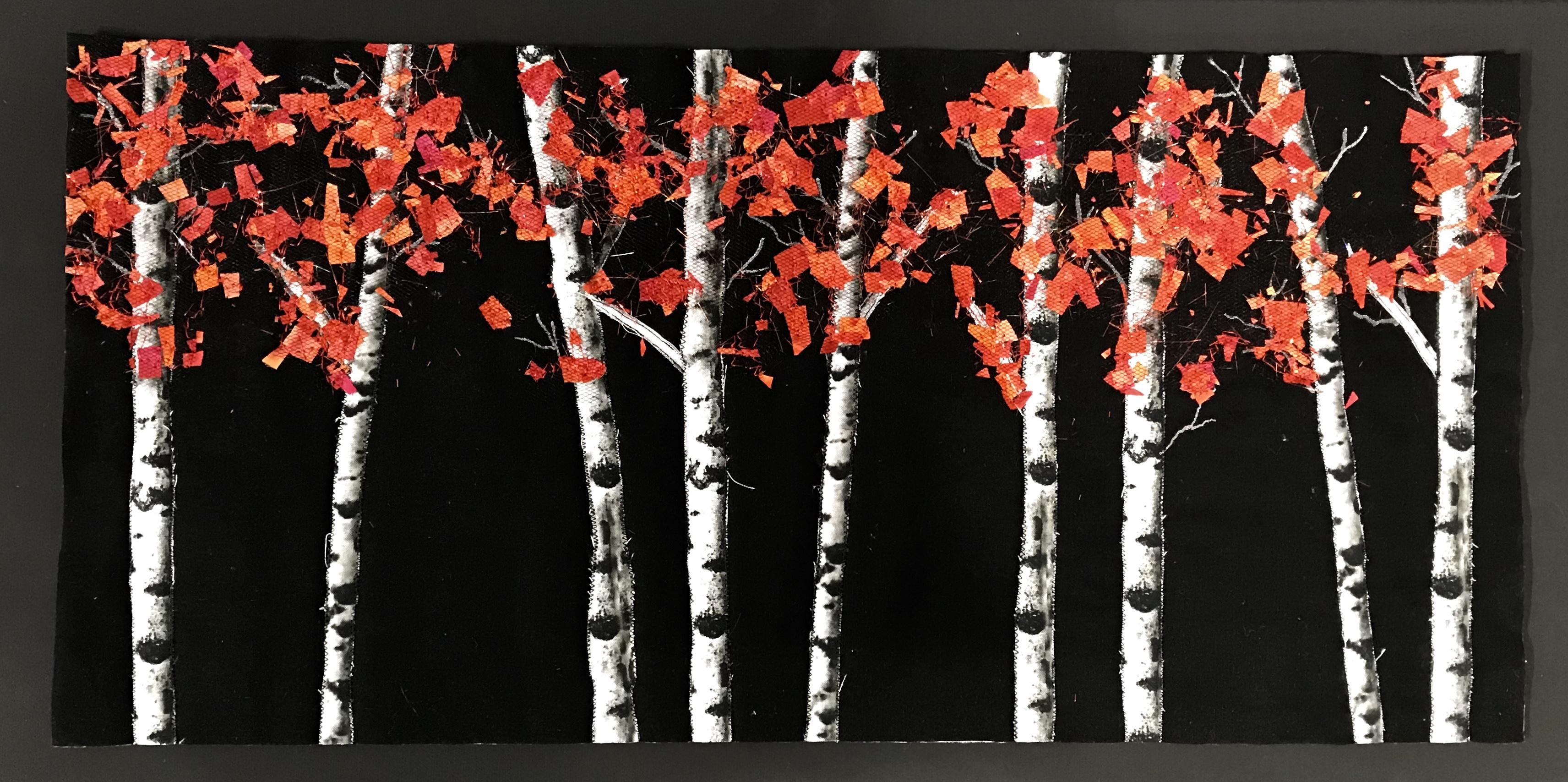 Fall Birch Trees by Teresa Schlabach