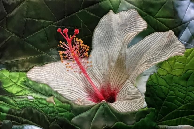 White Hibiscus by Teresa Schlabach